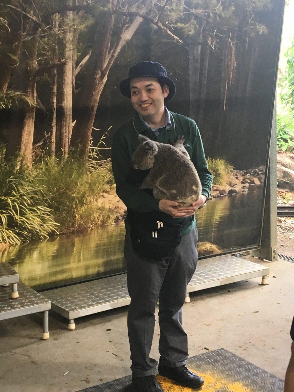 コアラを抱こうとしている今村